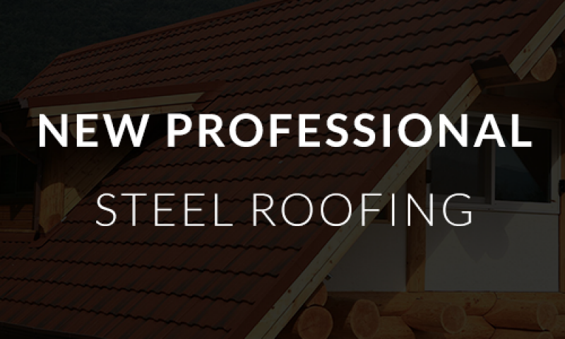 New Professional Steel Roofing